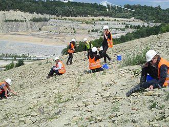Studierende suchen im Steinbruch nach Fossilien aus dem Trias © HTW Berlin / Tobias Nettke