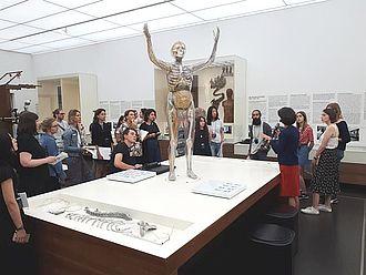 """Gespräch vor der """"gläsernen Frau"""" im Hygiene Museum Dresden © HTW Berlin / Tobias Nettke"""